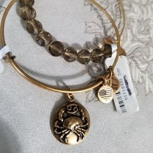 Cancer Alex and ani